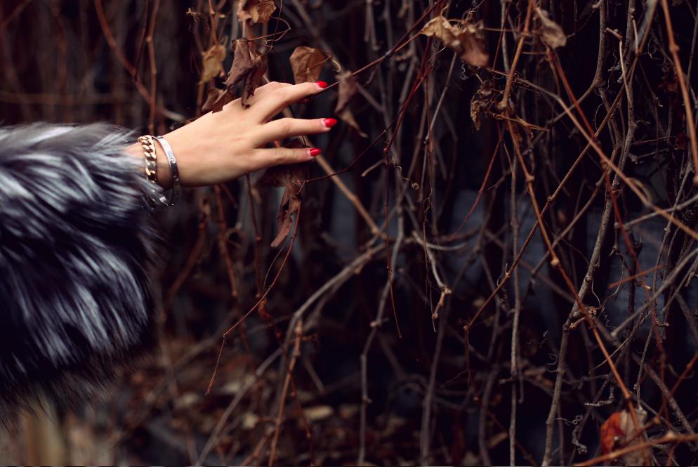 Ana Morodan wearing Paisi Furs
